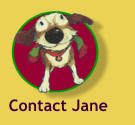 Contact Jane